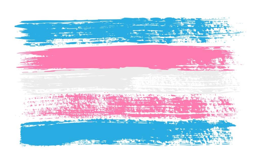 grunge-transgender-pride-flag-vector-illustration-symbol-of-lgbt-vector-id1204413111